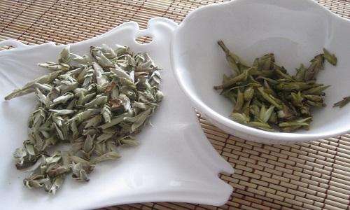 Чай для лечения почек