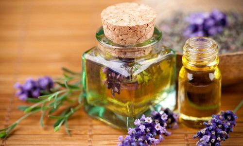 Лекарственные травы для лечения почек
