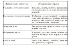 Примеры растительных сборов для лечения болезней почек