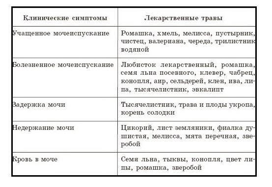 Диета При Хроническом Пиелонефрите И Хроническом Цистите.