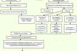 Схема оценки нефритического синдрома