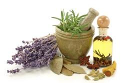 Фитотерапия - основа народного лечения при гломерулонефрите