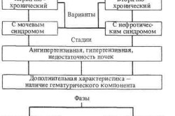 Классификация гломерулонефрита