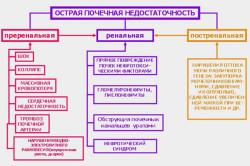 Классификация острой почечной недостаточности