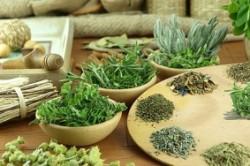 Сбор трав для лечения кисты почек