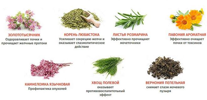 Состав средства Цирофит